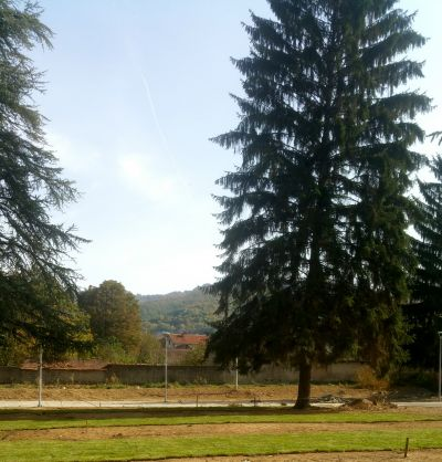 Градски парк в гр. Сурдулица, Сърбия - след 14 - Проект - Правец Сурдулица